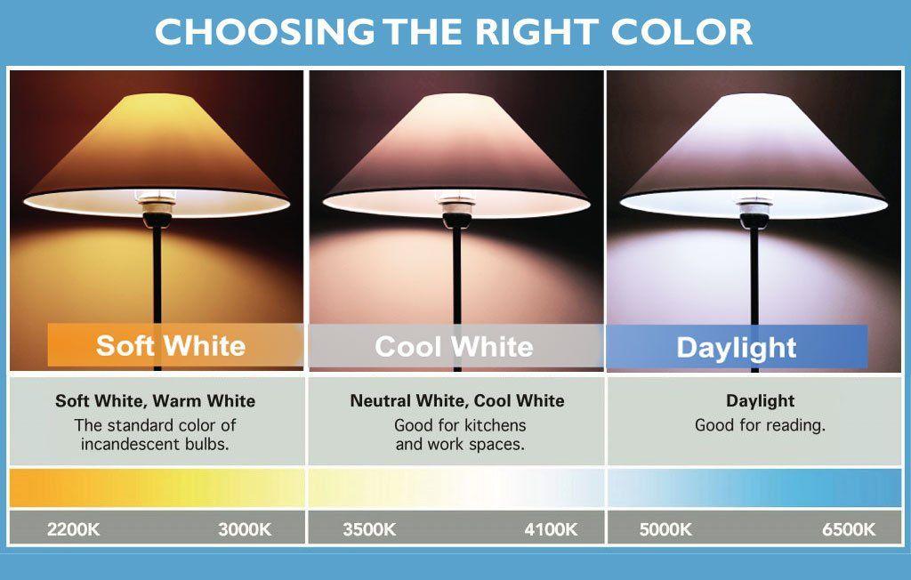 Viribright 60 Watt Equivalent 8w Led Light Bulbs Cool White 4000k A19 60w Bulb Gu24 Base Light Bulb 24 Pack Examine This Ou Bulb Led Light Bulbs Light Bulb