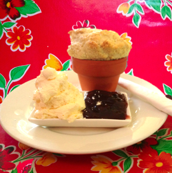 Flower Pot Scone from the Wayzgoose Cafe, Leura, NSW