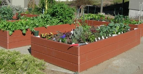 Recycled Plastic Raised Garden Bed 4 X 8 16 5