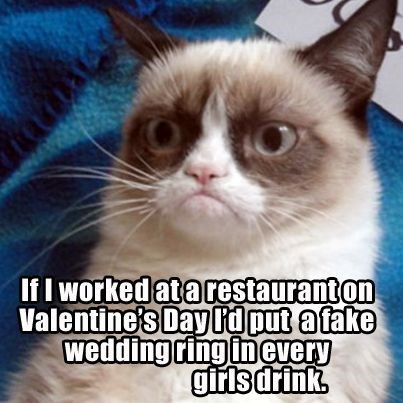 Valentine S Day Is Coming And Grumpy Cat Has Some Thoughts About It 17 Memes Cat Quotes Funny Grumpy Cat Christmas Funny Grumpy Cat Memes