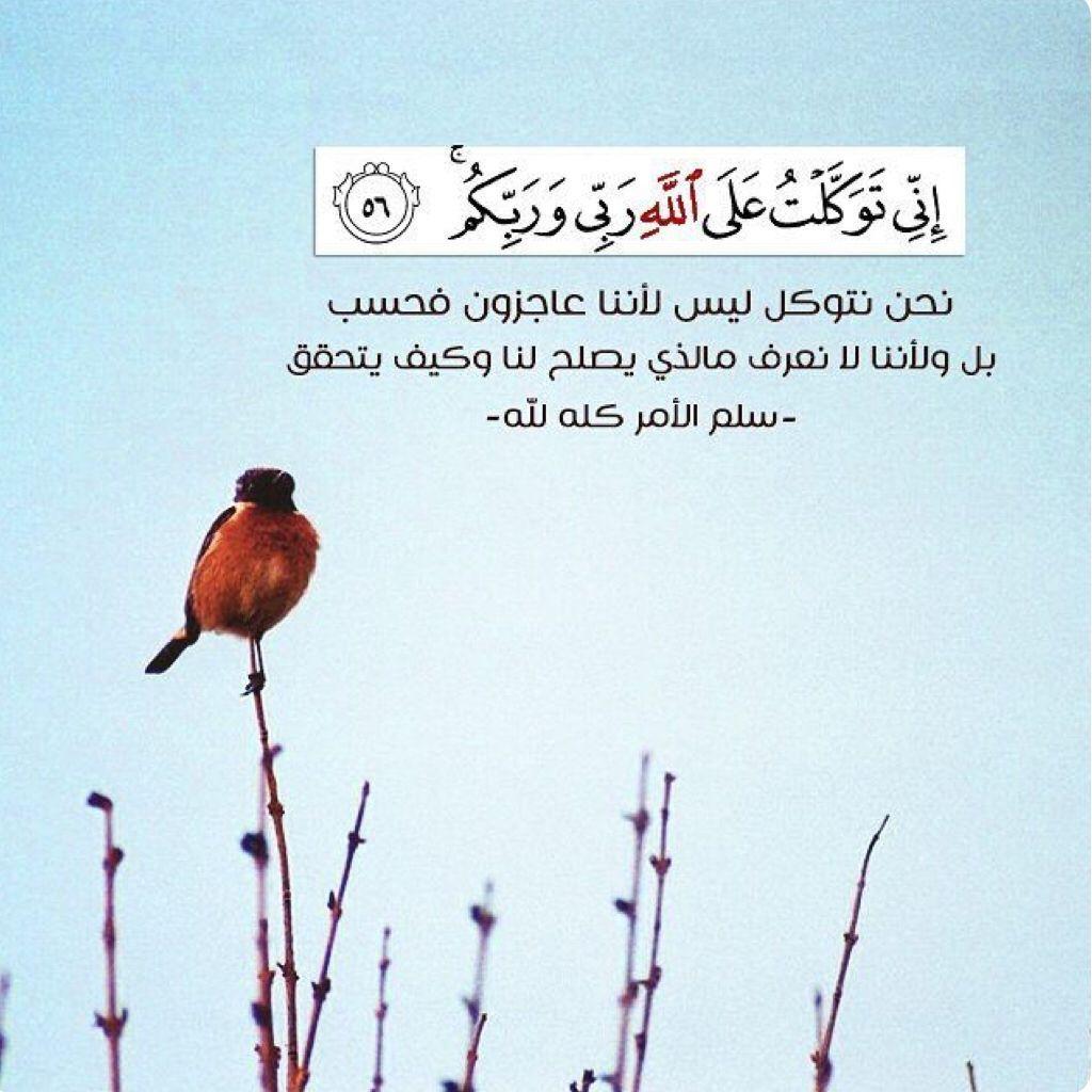 خواطر دينية قصيرة مزخرفة In 2020 Islamic Quotes Quran Quotes Daily Quotes