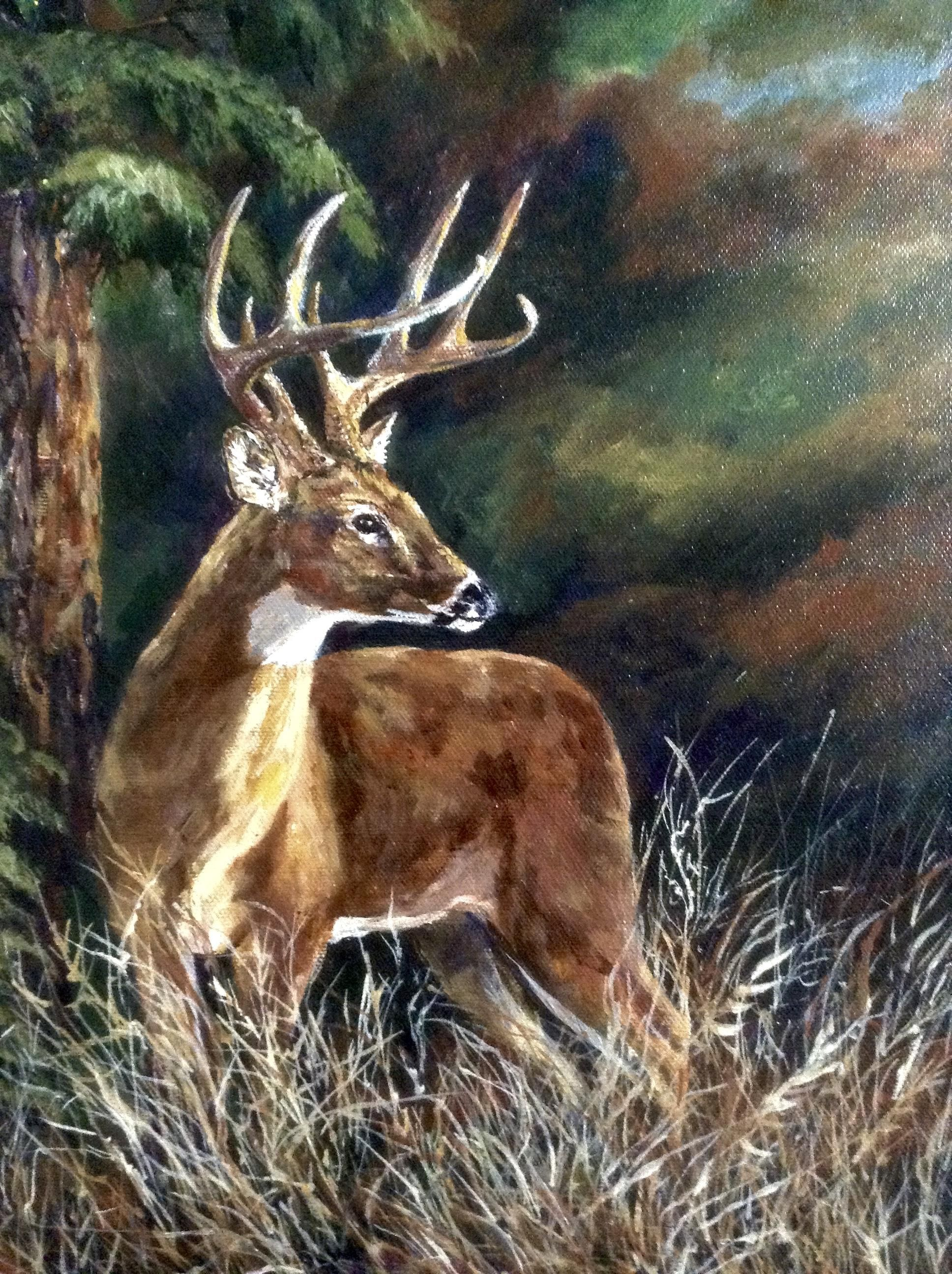 Donna Harris Deer Buck In Forest Oil Painting Canvas Art Hunting Watercolor