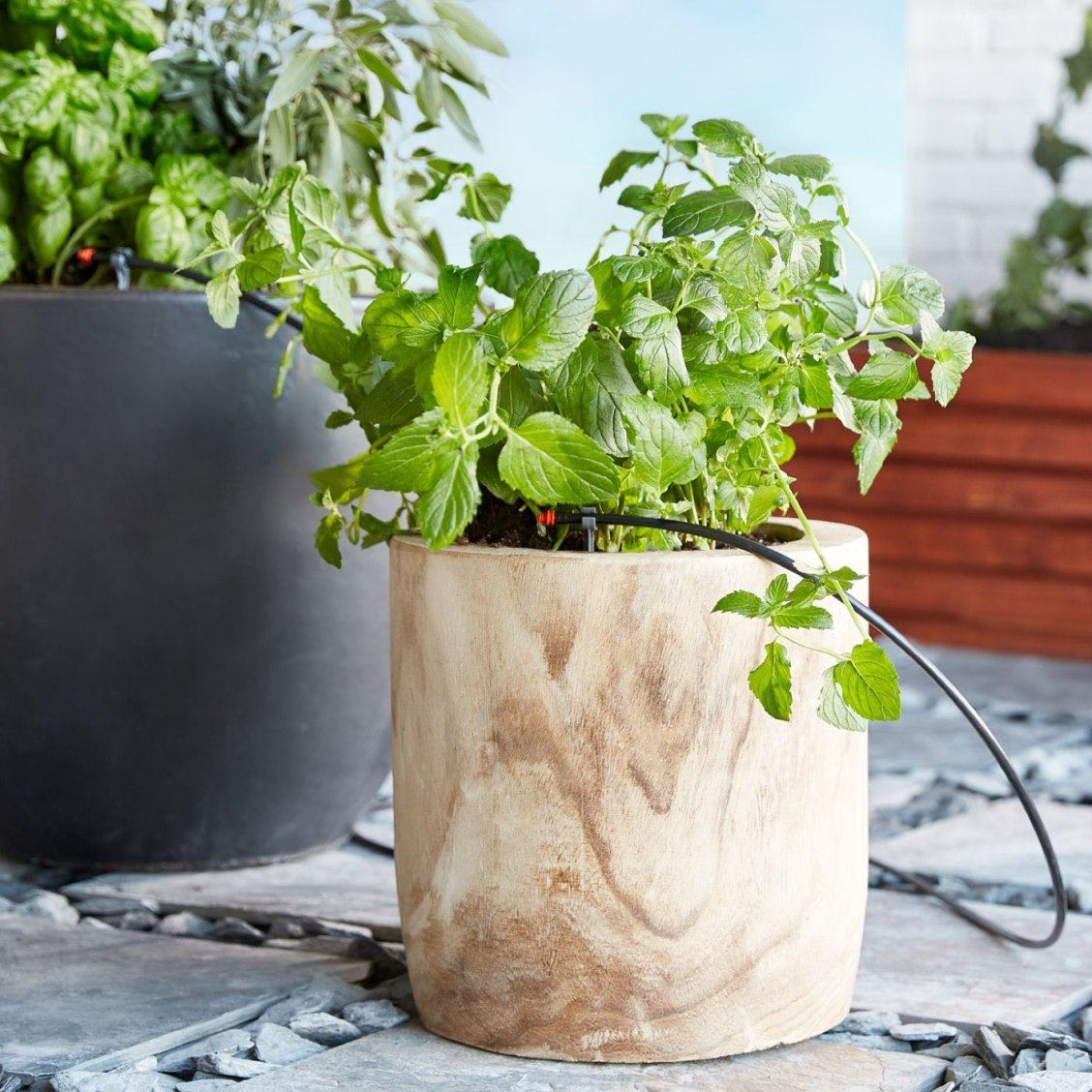 Never Kill A Houseplant Again With These Smart Watering Tools With Images Indoor Garden Indoor Vegetable Gardening