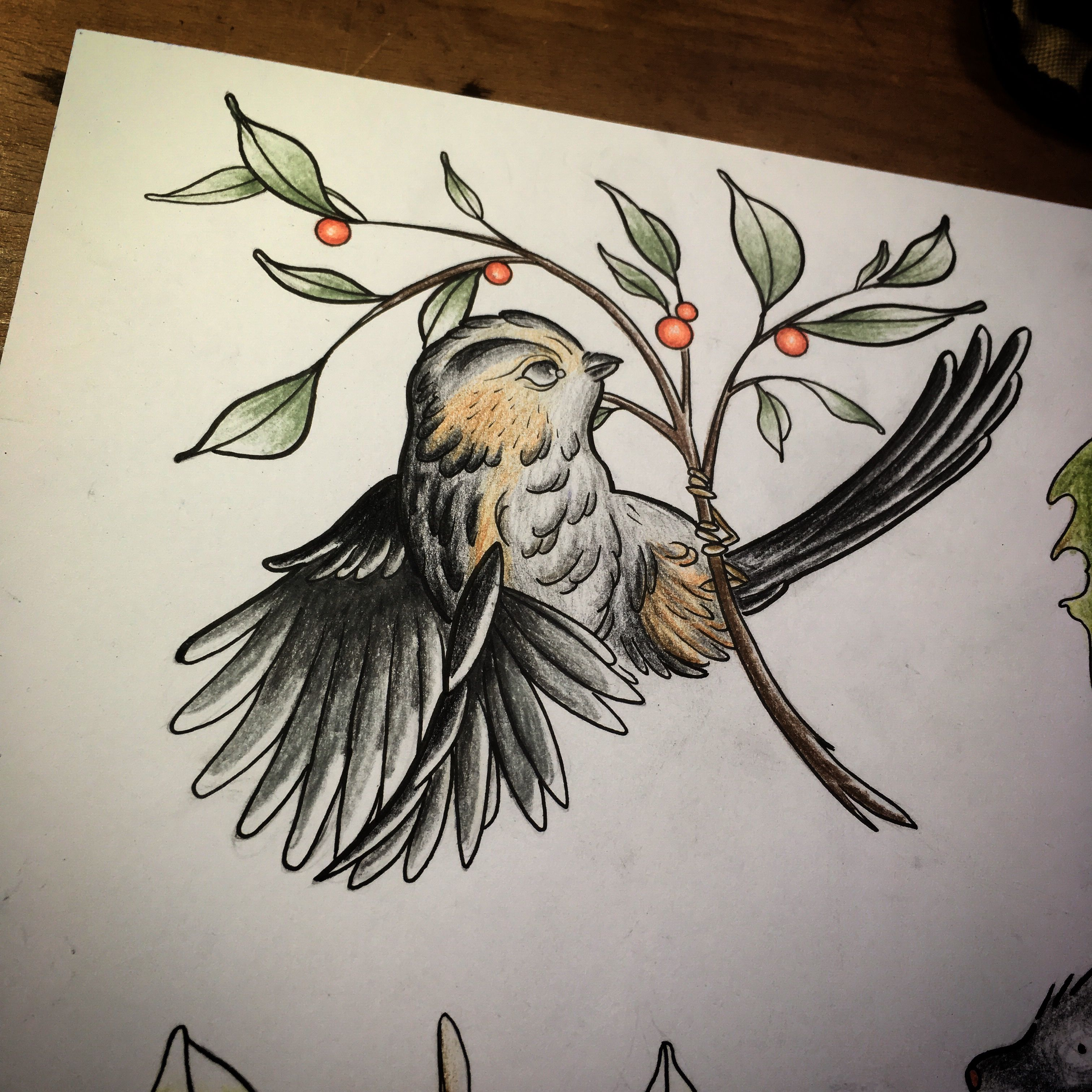 Flying Bird Bird Wings Berries Rembrandt Penicl Drawing Drawdaily Sketch Sketchbook Sketchaday Tattoo Flashset Ta Birds Flying Drawings Bird Wings