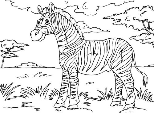 Coloriage Zebre Zebra Coloring Pages Lion Coloring Pages Animal Coloring Pages