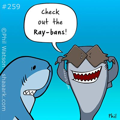 Image result for shark cartoon ray bans