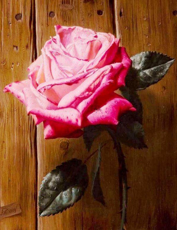 Cuadros de Flores al Óleo