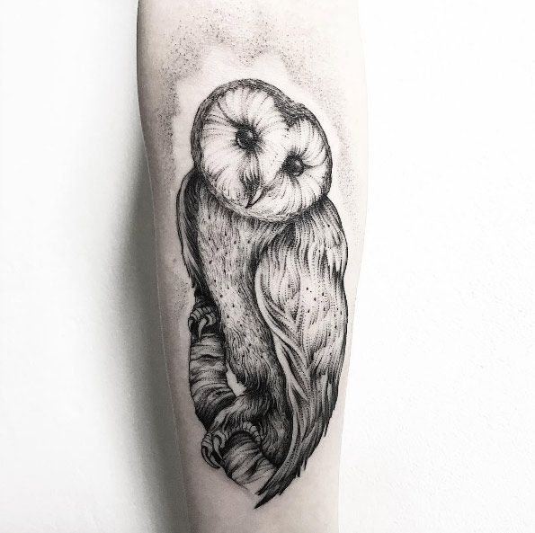 Dotwork Barn Owl Tattoo By Parvick Barn Owl Tattoo Owl Tattoo Animal Tattoo