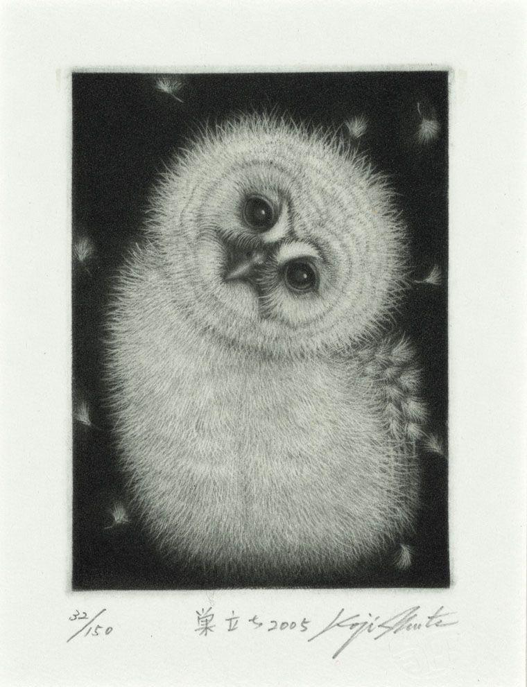 Process Mezzotint Size 10x8cm Year 2005 Artist Koji Ikuta Title Fledgling