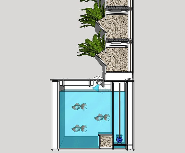 aquaponic gardening. grow food at home with lettuce evolve\u0027s compact aquaponic garden gardening h