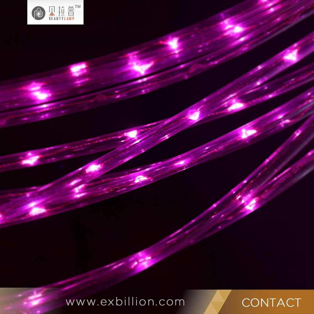 800 LED Curtain Lights String Wedding Christmas Factory Wholesale