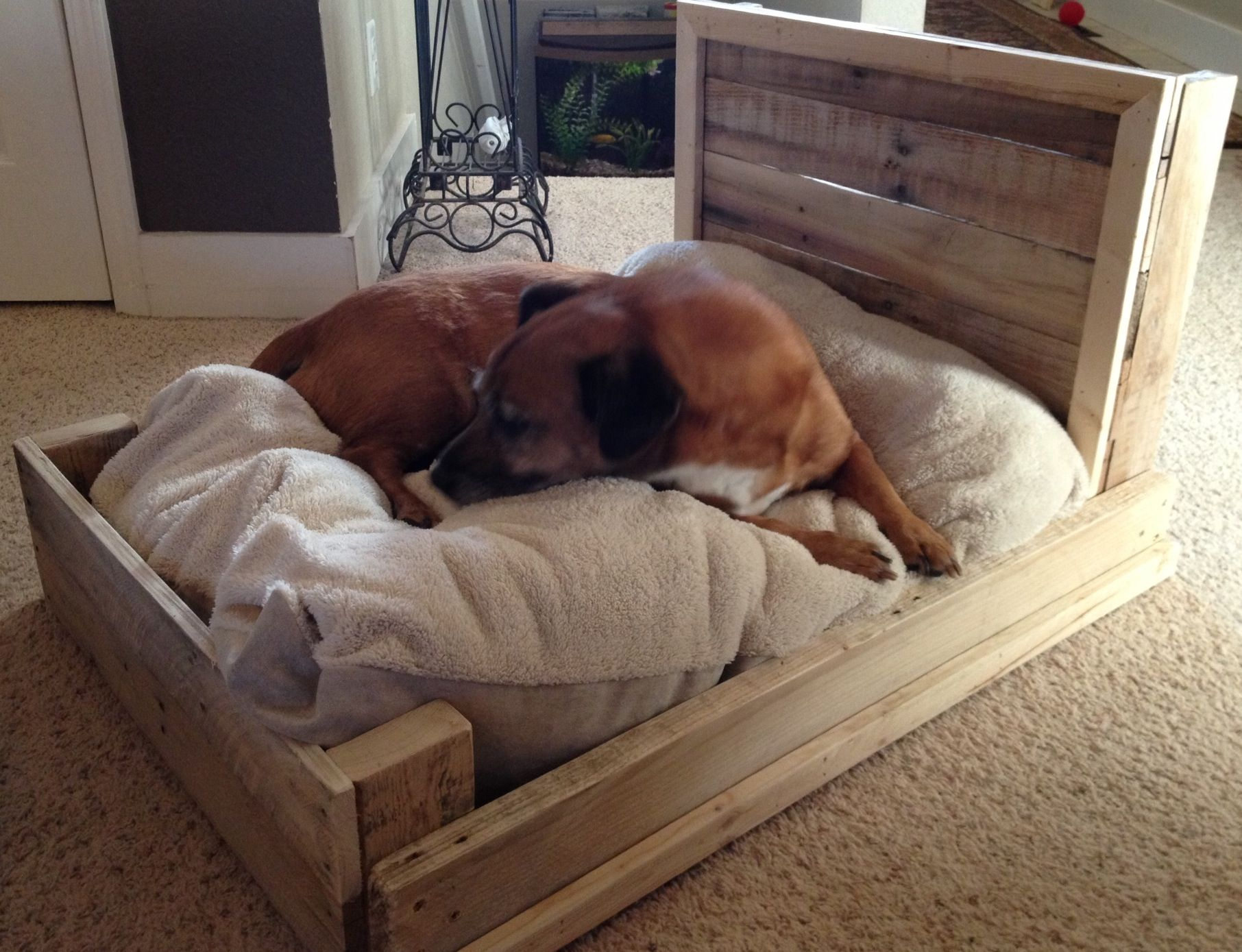 Dog bed from pallets DIY Pallet Projects Pinterest