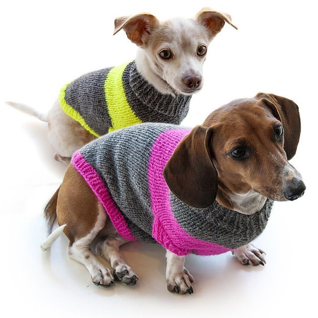 Knitting Pattern for these Dog Sweaters | Dog Stuff | Pinterest ...