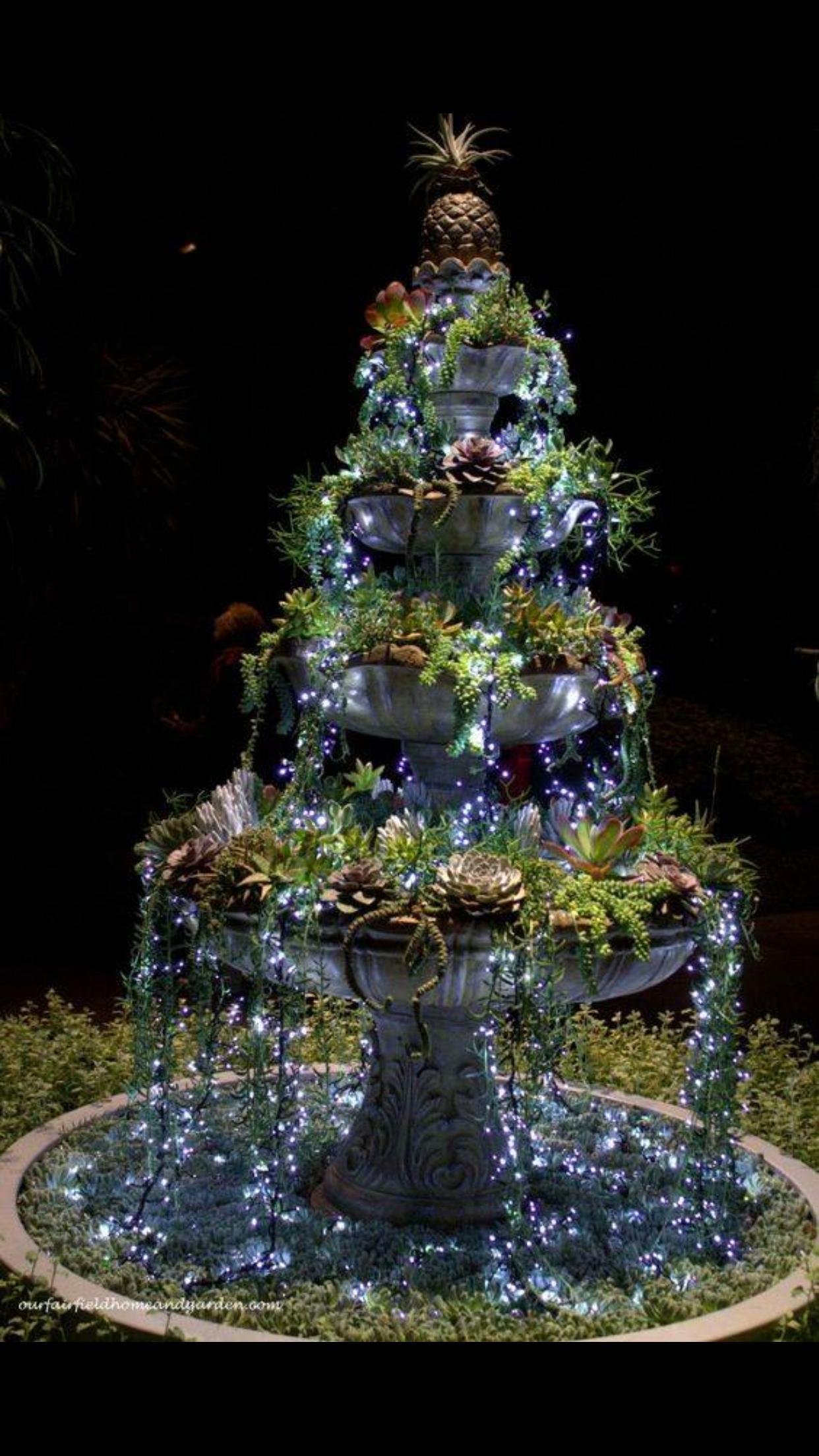 Succulent and fairy light fountain for the garden Garden