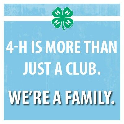 This Is Why I Love 60H So Much So Impressed With All The Support Awesome 4 H Quotes