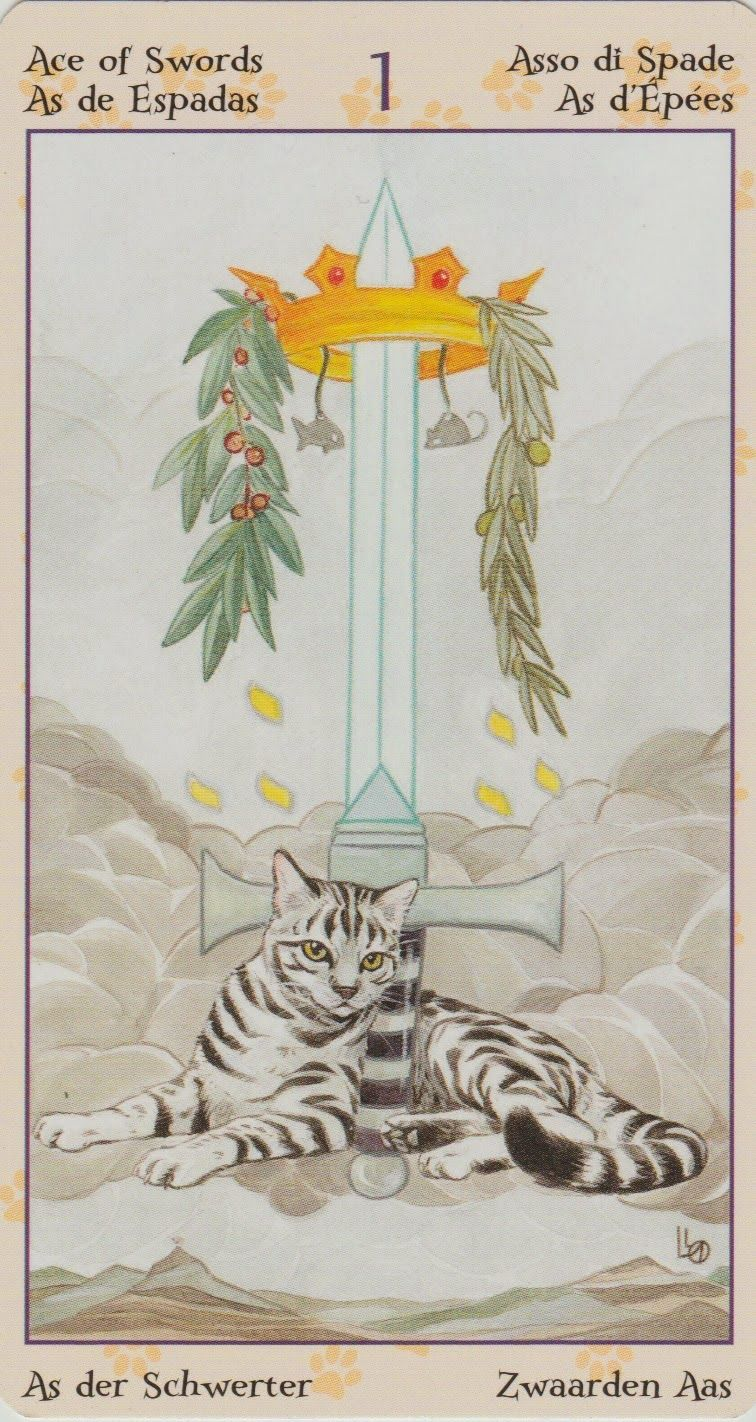 Ace Of Swords From Lo Scarebo's Tarot Of The Pagan Cats