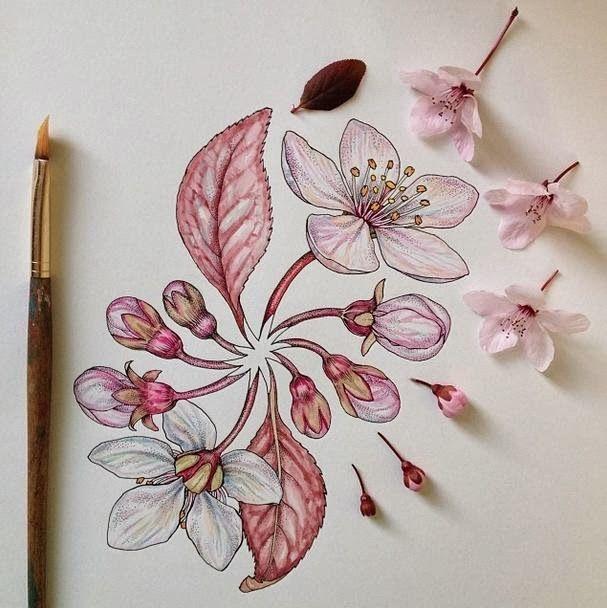 Resultado de imagem para flores de cerezo dibujo  tatoo