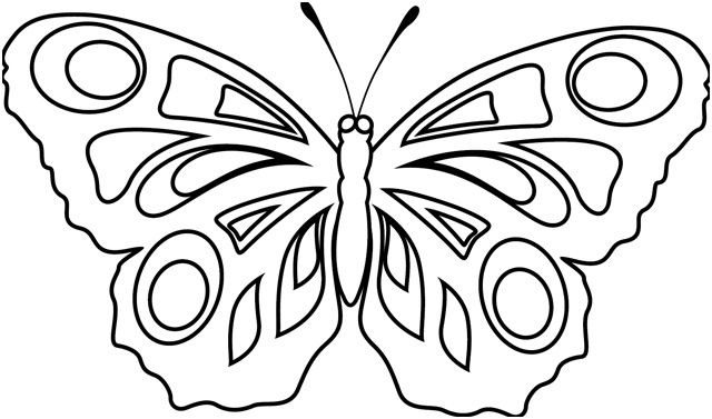 11 Nice Papillon Coloriage Collection Coloriage Papillon Coloriage Insectes Coloriage Papillon A Imprimer