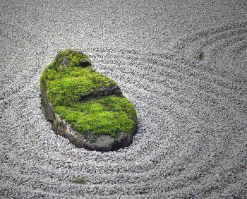 The Japanese garden #JapaneseGardenDesignboulders #smalljapanesegarden The Japanese garden #JapaneseGardenDesignboulders / #Garden #Japanese #japanesegardendesignboulders #smalljapanesegarden