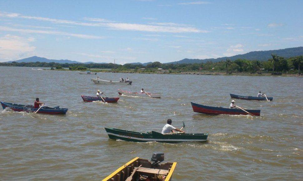Descubren Pez De Origen Asiático En El Gran Lago De Nicaragua Y Lago Nicaragua Grandes Lagos Nicaragua