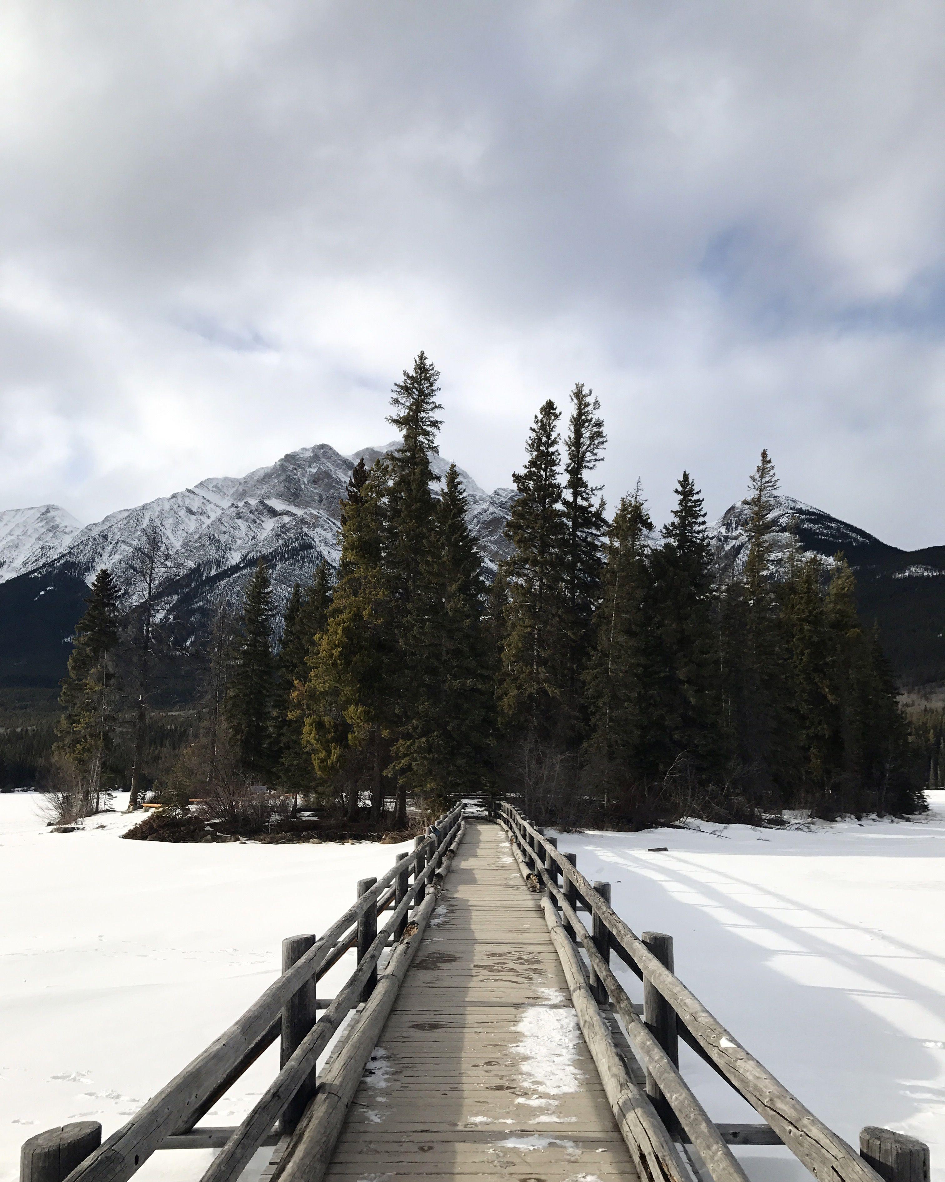 Canada Canadianrockies Pyramidlake Jasper Travel Mountains