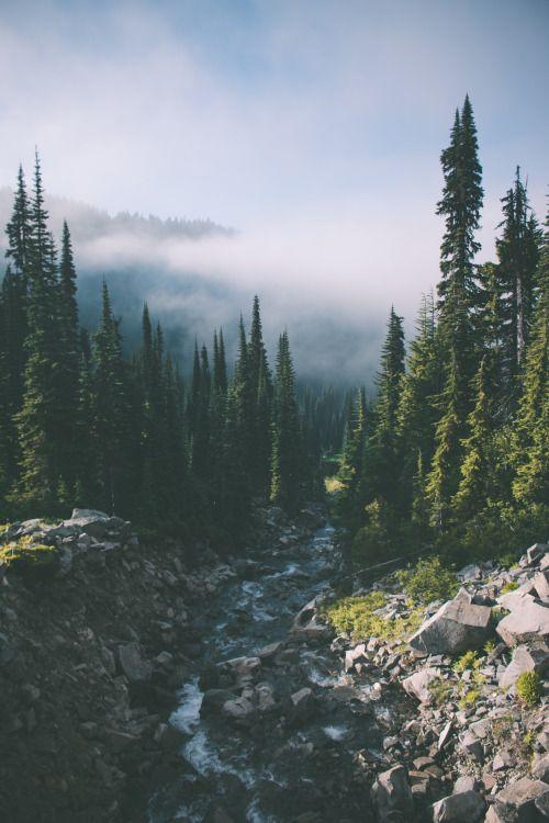 Pinterest Lilyxritter Nature Photography Landscape Photography Scenery