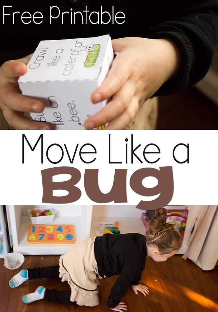 Move like an insect gross motor activity for kids gross for Gross motor games for preschoolers