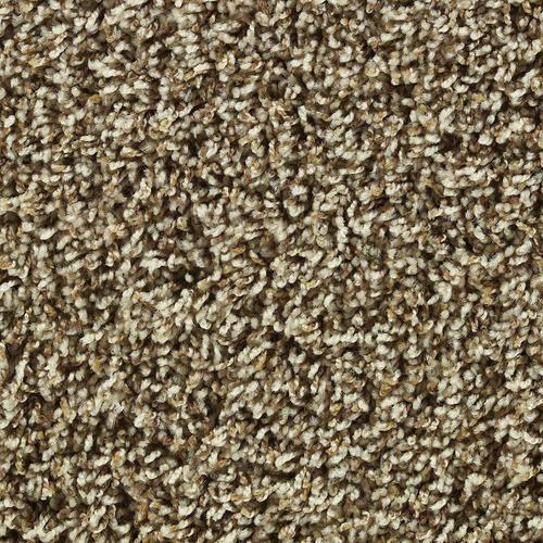 Choosing Carpet Color Shaw Color Debut Frieze Carpet 12 Ft Wide At Menards Frieze Carpet Affordable Carpet Buying Carpet