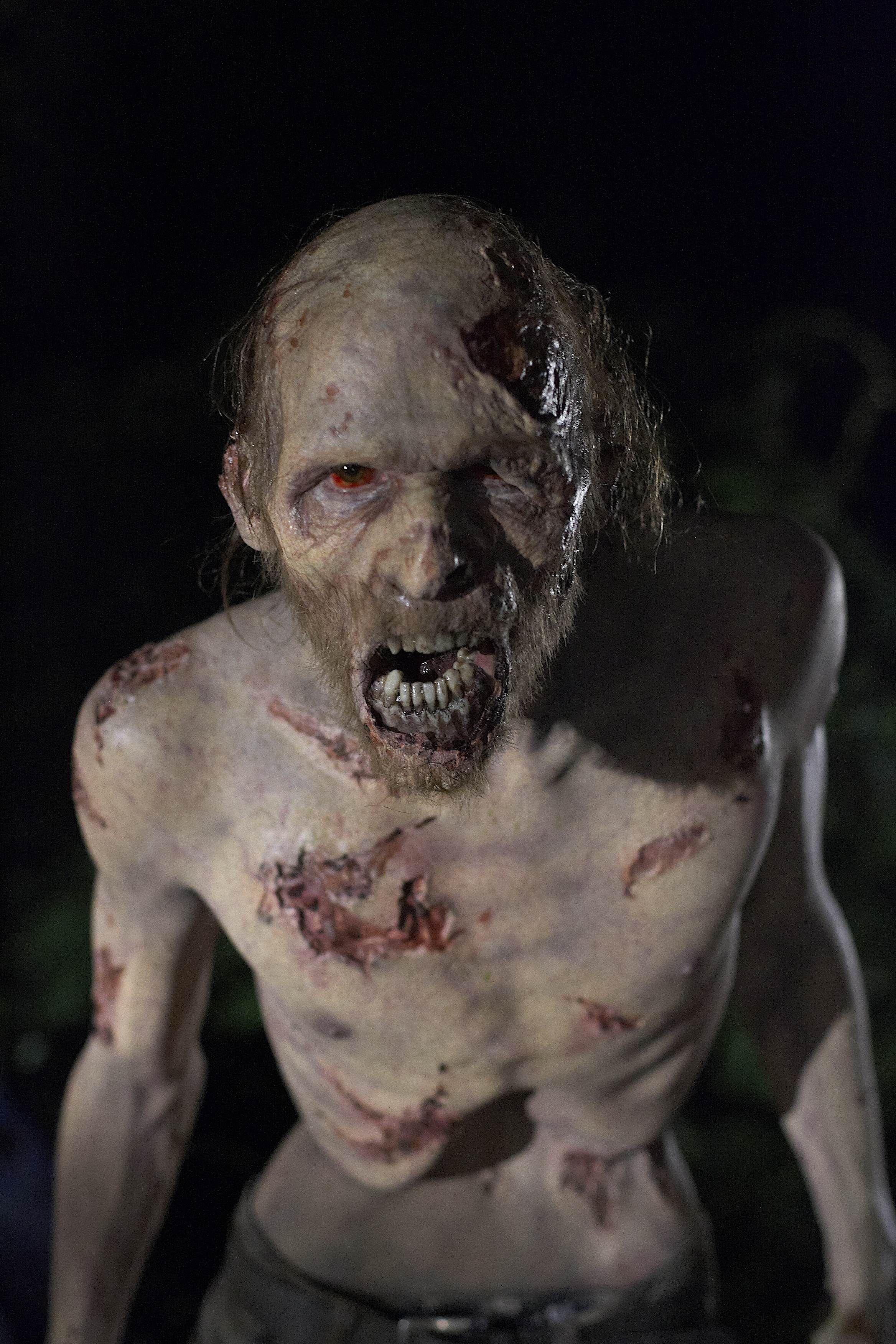 Wa walking dead pumpkin stencil - Walking Dead Season