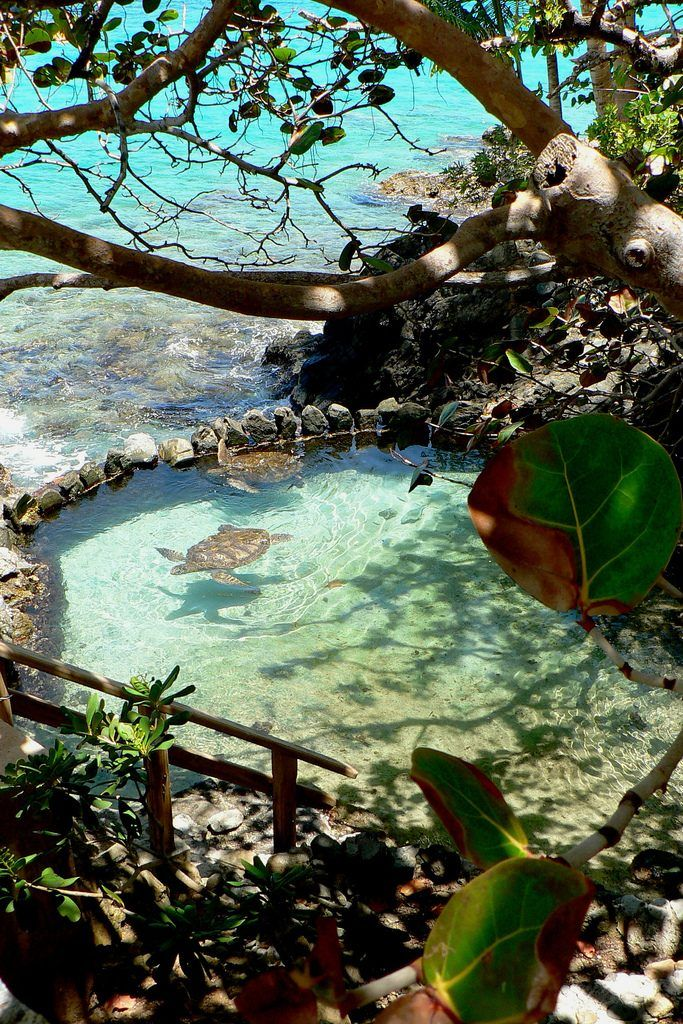caribbean islands  visit   beautiful places   world caribbean islands
