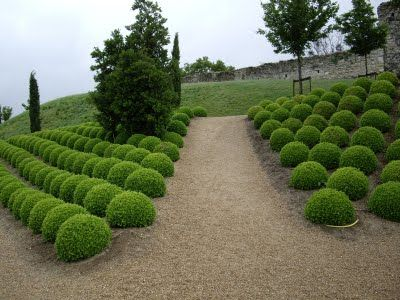 Perfect pruning in garden in Loire Valley, France. Photo via SubiYurek. From Thinking Outside the Boxwood.