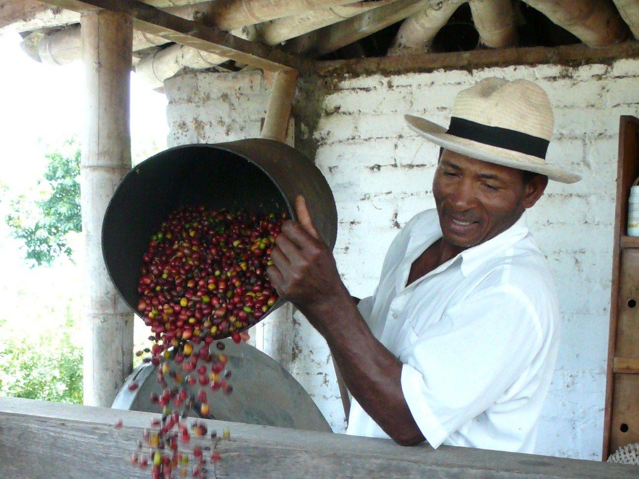 Besøk en colombiansk kaffeplantasje.Visit a colombian coffeplantasion.