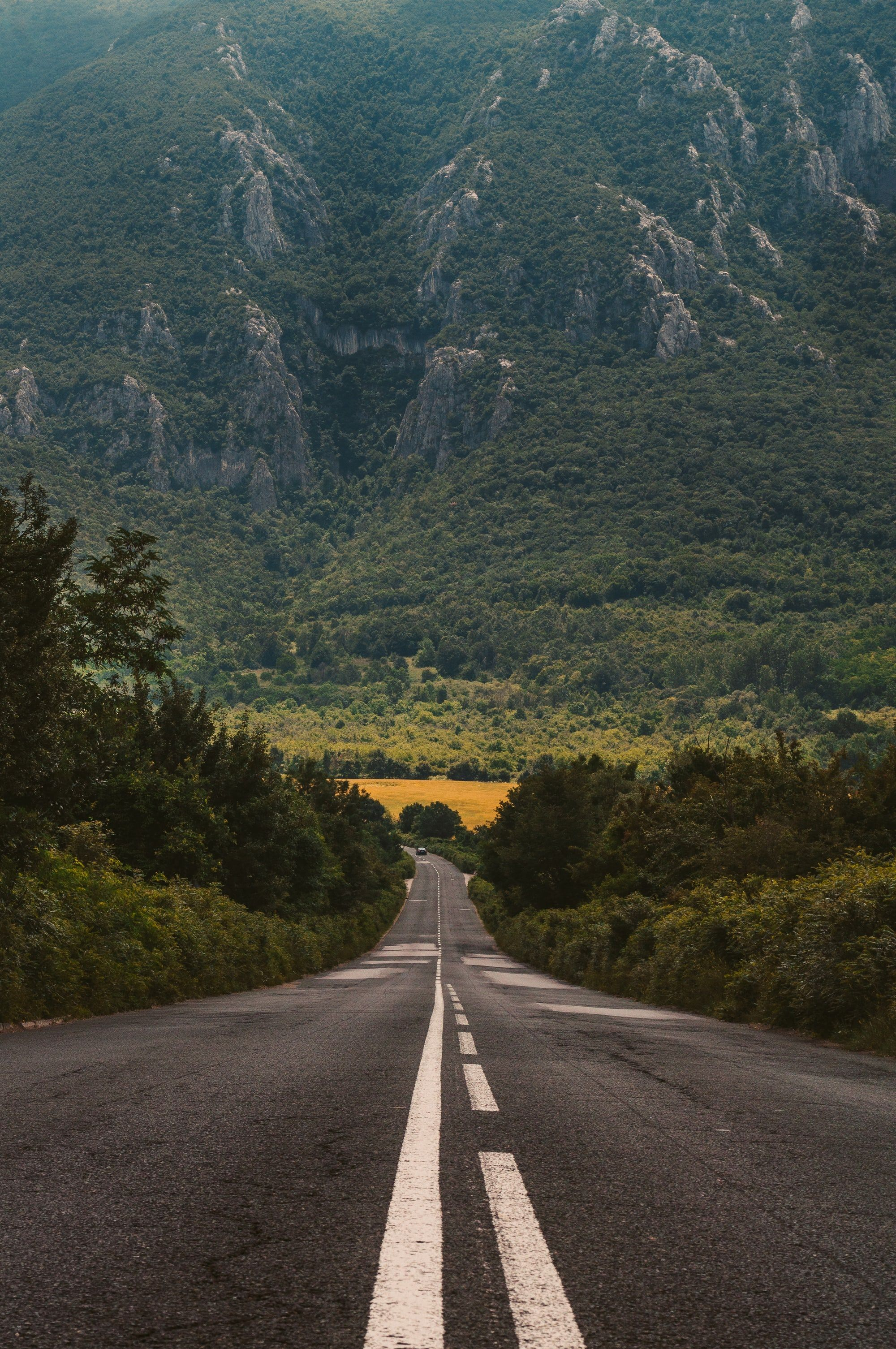 Thanks To Evgeni Evgeniev For Making This Photo Available Freely On Unsplash Road Photography Background Images Beautiful Roads