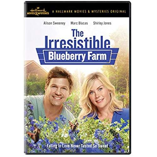 The Irresistible Blueberry Farm (With Images)