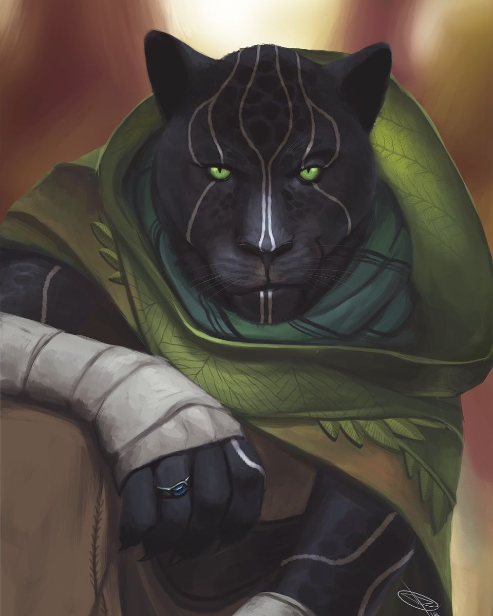 Tabaxi Monk Fantasy Character Design Character Art Cat Character All orders are custom made and most ship worldwide within 24 hours. pinterest