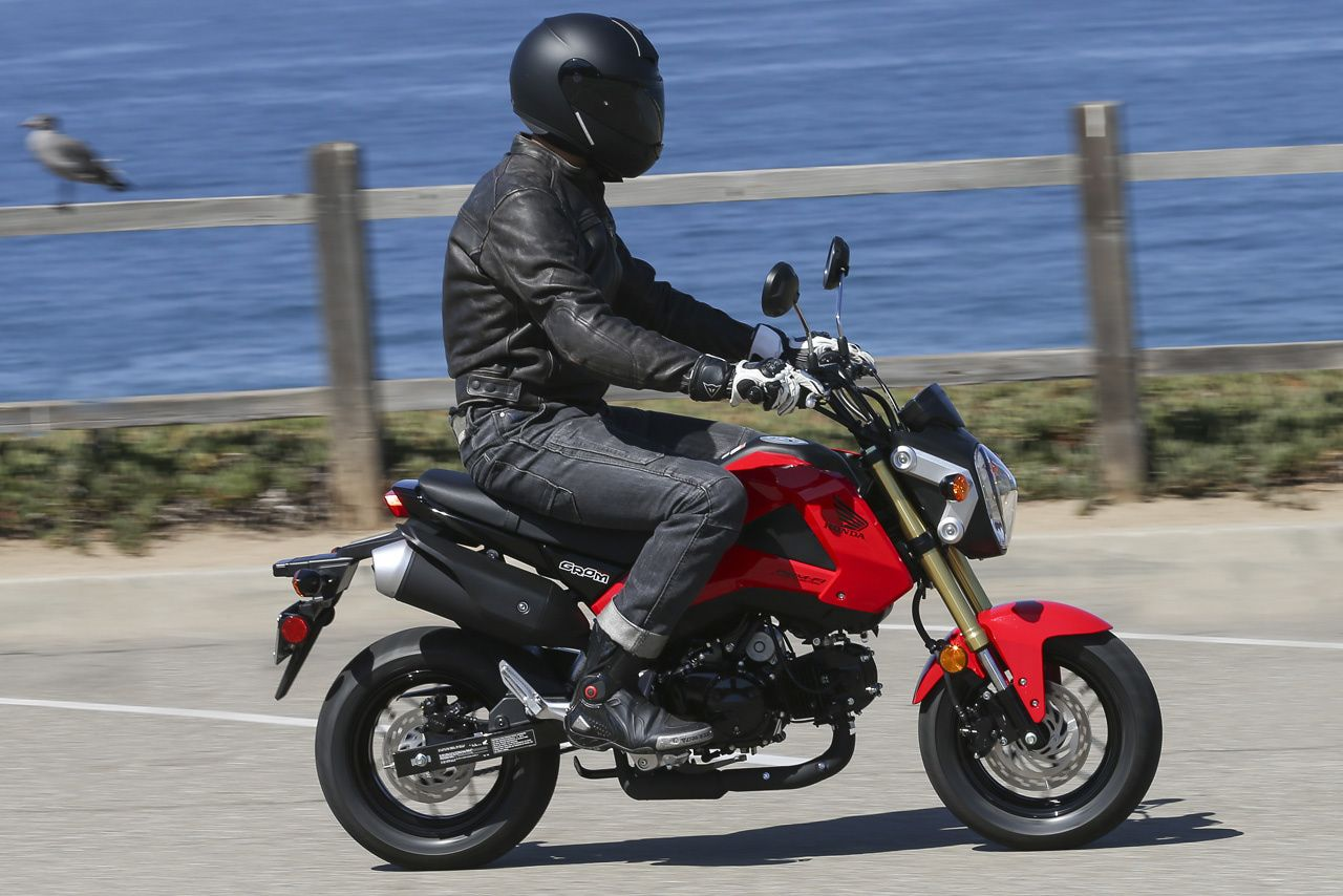 Honda Grom Review >> 2014 Honda Grom Review Small Bike Big Thrills