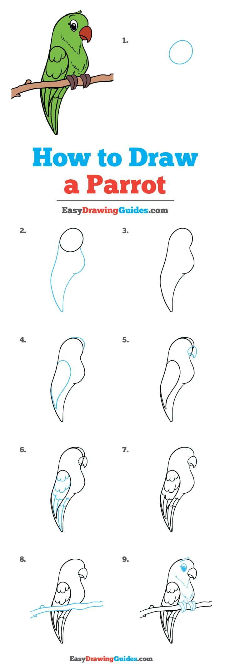 How To Draw A Parrot Really Easy Drawing Tutorial Drawing Tutorial Drawing Tutorials For Kids Drawing Tutorial Easy