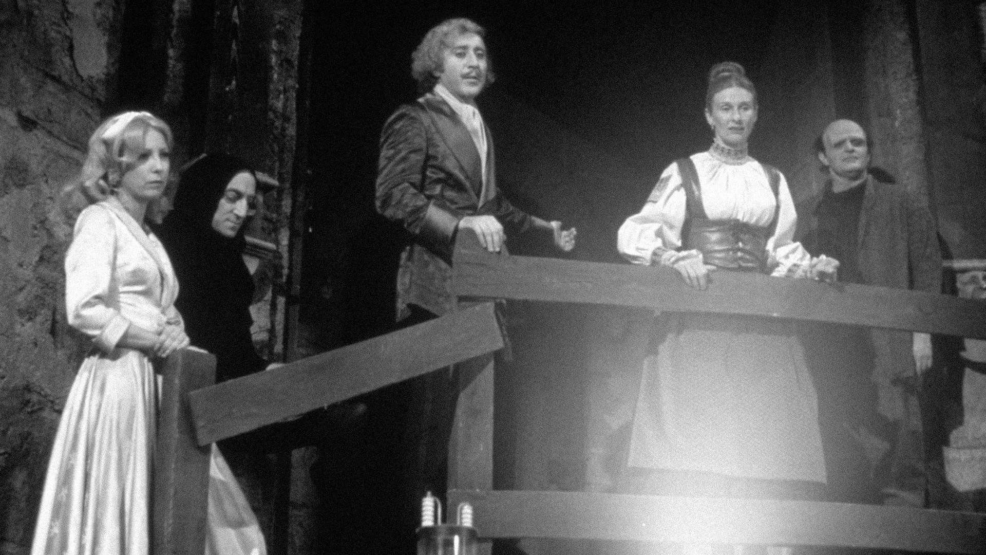 Cast of Young Frankenstein .   Movies   Pinterest   Young ...