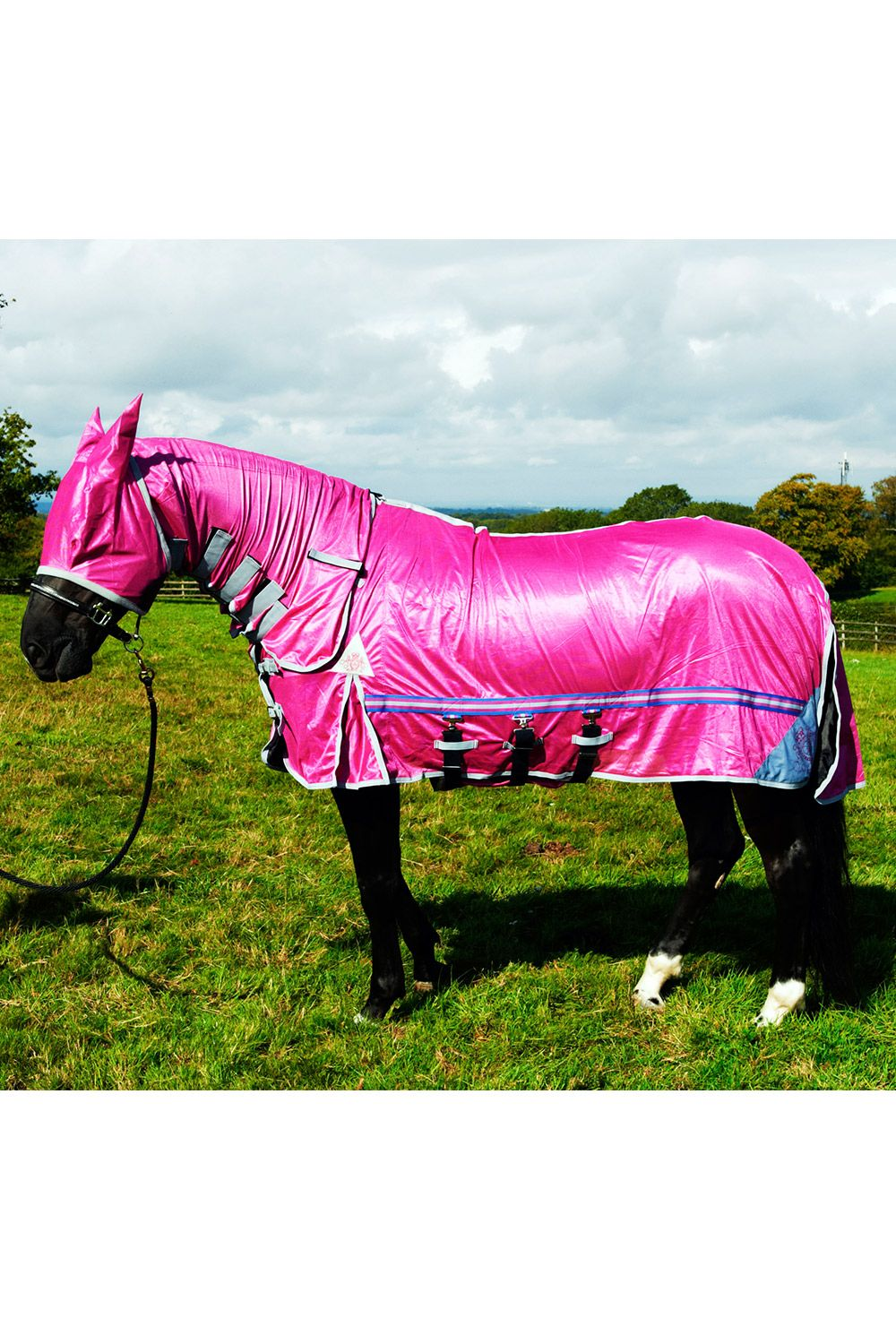 Fly Rug Pink Horse Rugs