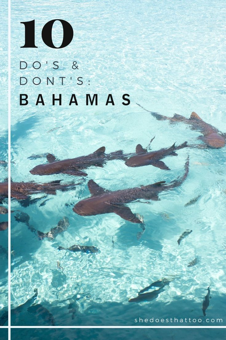 The Ultimate Guide to Bahamas: Dos and Donts