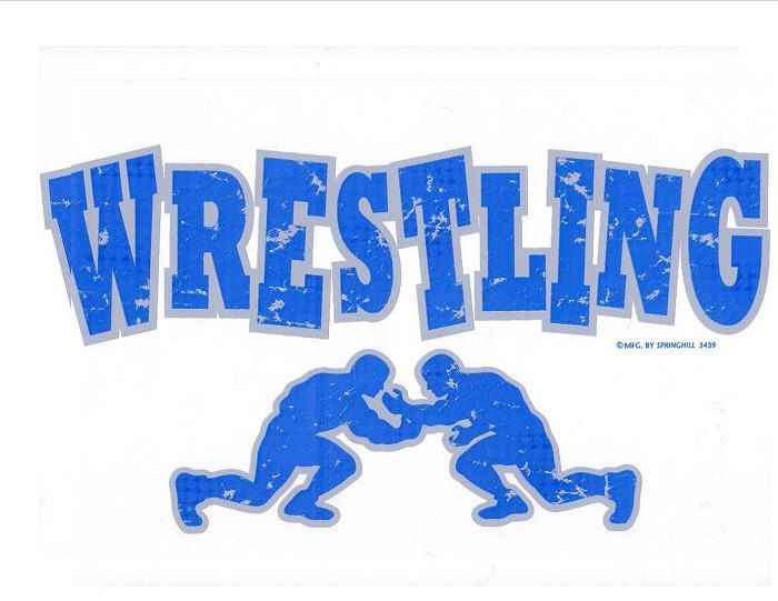 """WRESTLING Fabric  on ONE 18"""" x 22"""" Panel for Quilt or Sew. by TheLonesomePet on Etsy https://www.etsy.com/listing/127963749/wrestling-fabric-on-one-18-x-22-panel"""