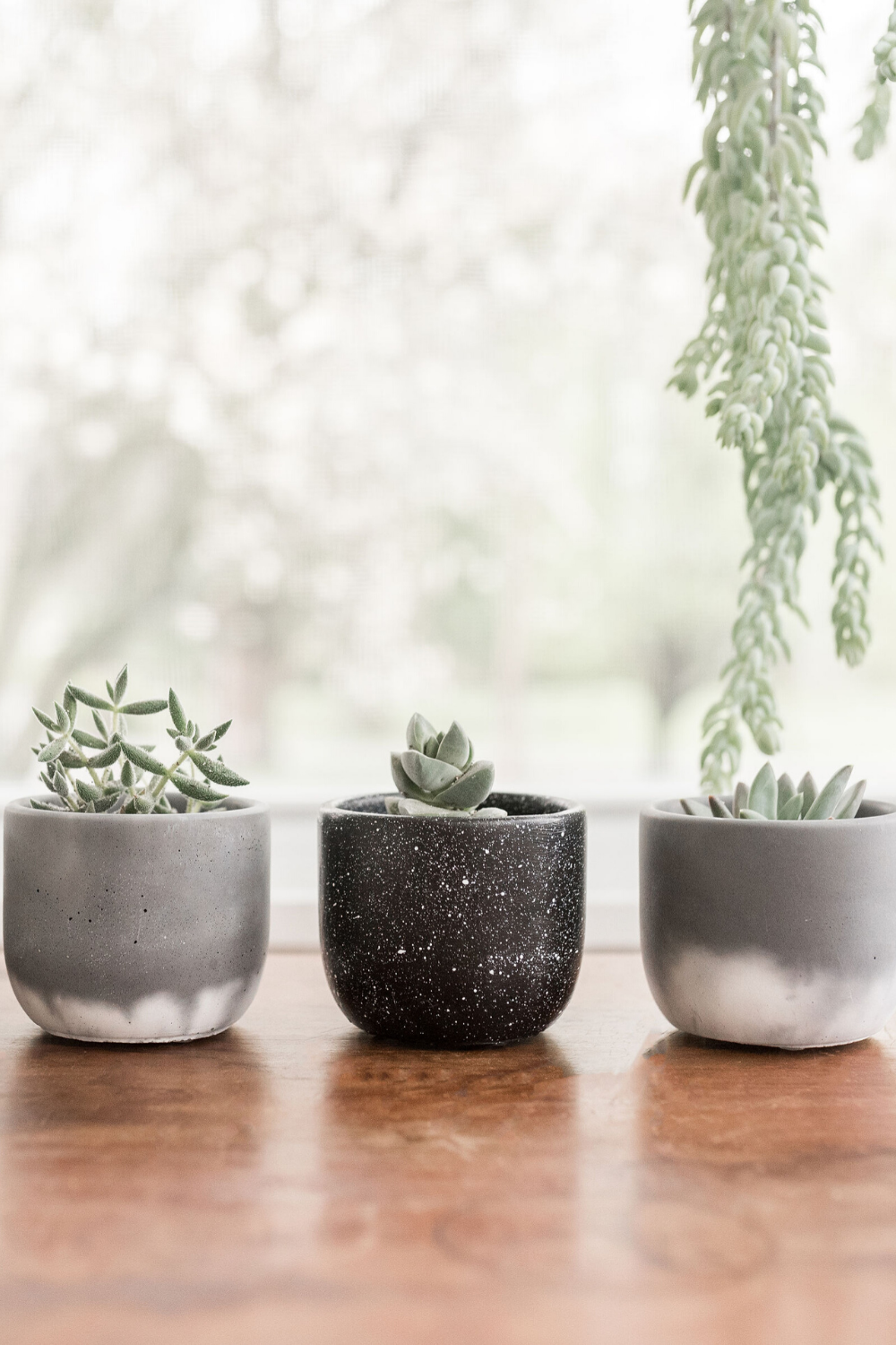Set Of 4 Succulent Planters With Drainage Small Pots For Etsy In 2020 Succulent Planter Diy Concrete Planters Concrete Succulent Planters