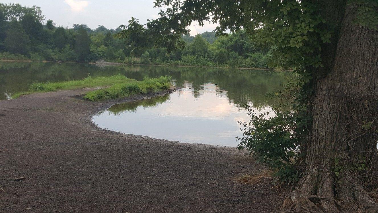 Fort Smith Arkansas dog park Fort smith arkansas