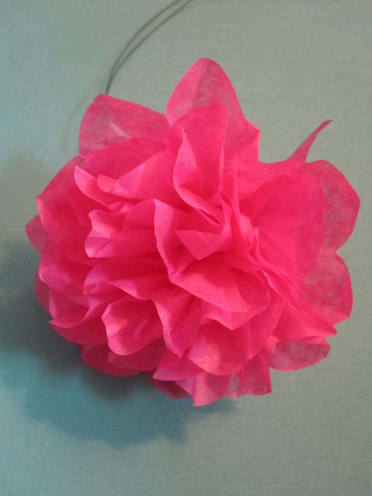 Tissue paper flowers directions of paper by carefully pulling tissue paper flowers directions of paper by carefully pulling it in towards mightylinksfo Choice Image