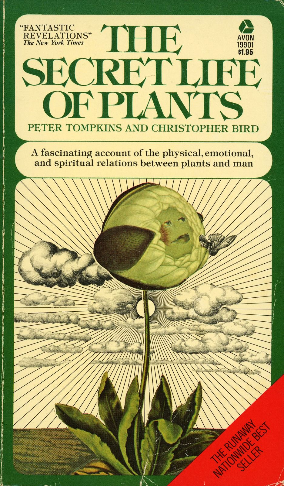 Avon Books 19901 Peter Tompkins And Christopher Bird The Secret Life Of Plants Secret Life Of Plants Avon Books Vintage Book Covers