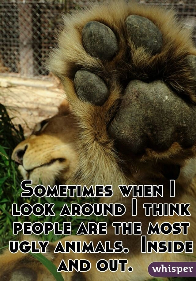 Sometimes when I look around I think people are the most ugly animals.  Inside and out.