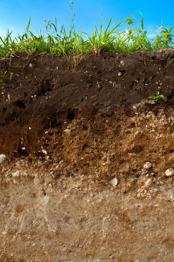 The Abc S Of Soil Science Organic Gardening Mother Earth News Garden Soil Soil Improvement Soil Layers
