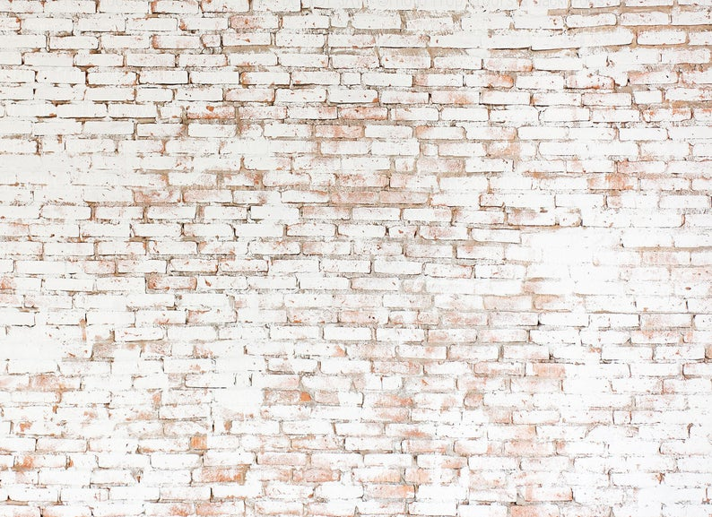 Distressed Rustic Aged White Brick Wall Photography Backdrop Grunge Old Party Cake Smash Senior Photo Booth Wedding Celebration Photography Wall Photography Backdrop Brick Wall