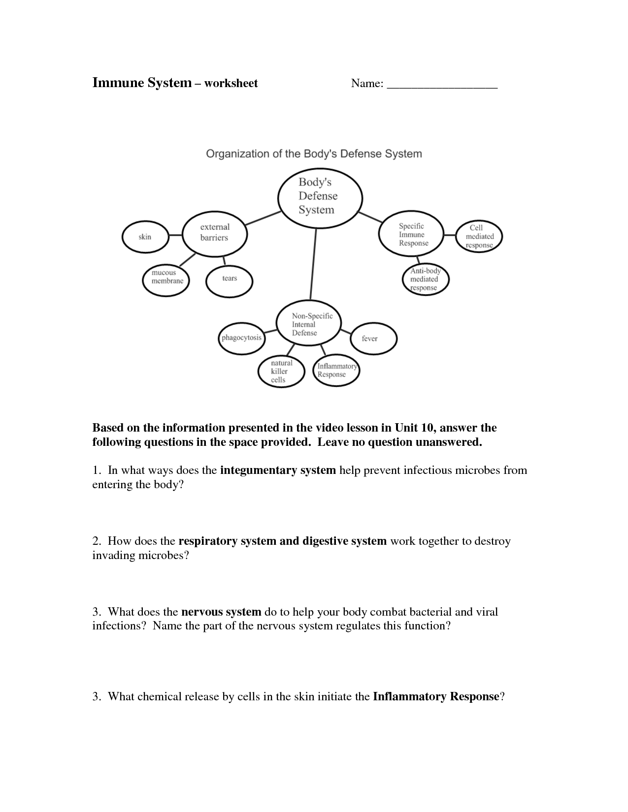 Immune System Worksheets For 5th Grade Integumentary