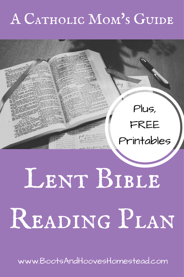 a catholic mom s guide lent bible reading plan plus free